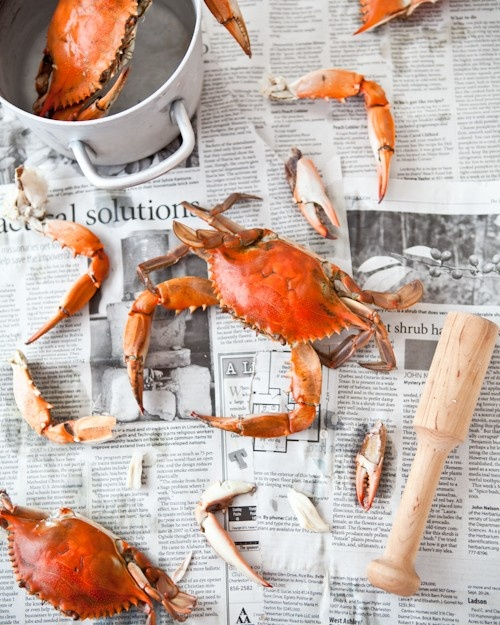 Dungeness crab risotto