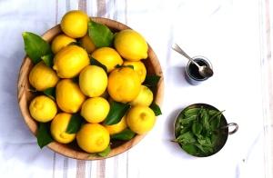 LemonsMintAgave